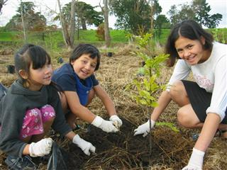 Kids planting Otara community day